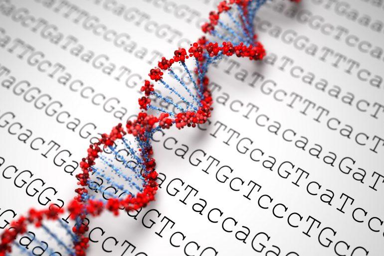 The 4-letter alphabet of DNA: A (Adenine), T (Thymine), C (Cytosine), G (Guanine)